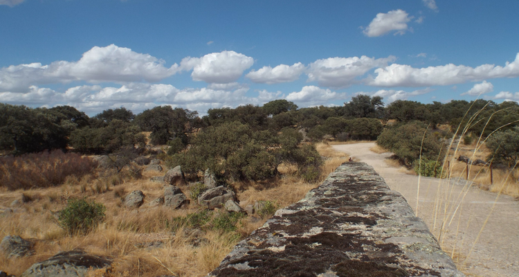 14 Extremadura-related blog posts worth a read