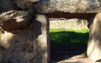 Pigs and hidden rural treasures: Torrequemada's corralás