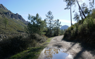 A walk and lunch in Cañamero