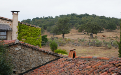 Accommodation in Sierra de Gata: El Cabezo