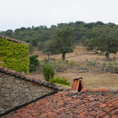 Accommodation in Sierra de Gata_El Cabezo_main