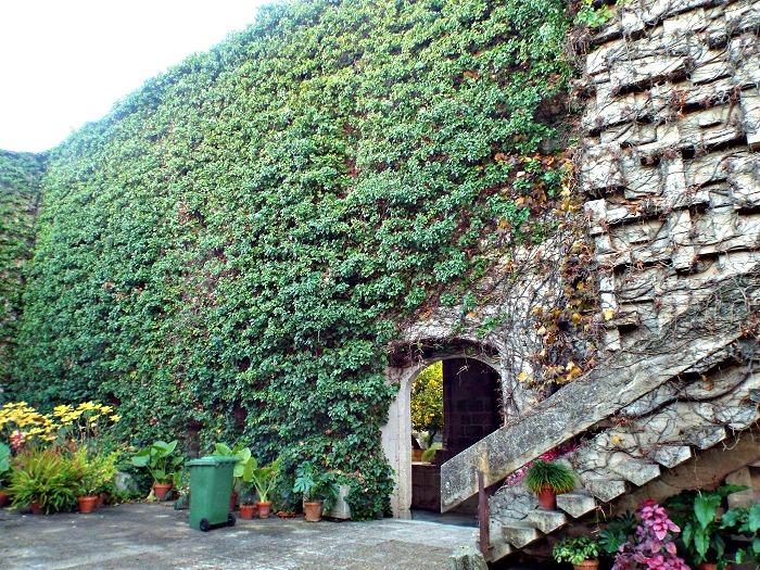 San Benito convent, patio