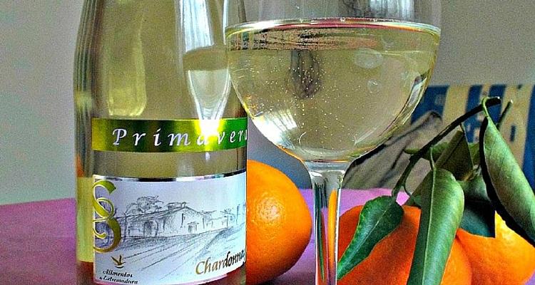 Primavera Blanco or how I started drinking wine