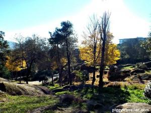 trees, parque de los pinos