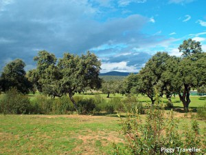Dehesa, Extremadura