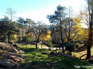 Parque de los Pinos, Plasencia