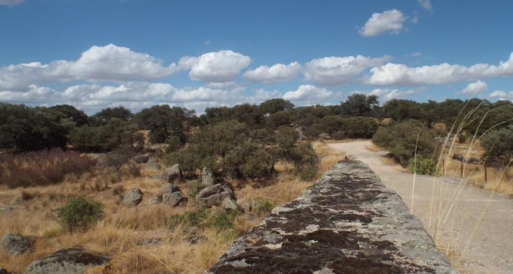 Extremadura countryside