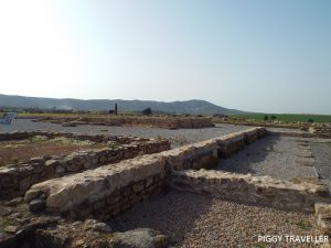 Roman city of Regina, Casas de Reina