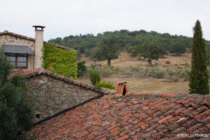 Accommodation in Sierra de Gata, Casa Rural El Cabezo