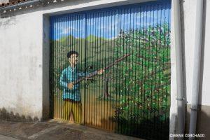 beating the olive tree_Romangordo, Extremadura