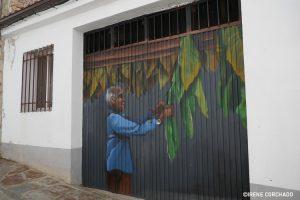 drying tobacco leaves_Romangordo, Extremadura